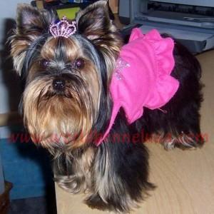 Lola 3